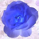 Romance Rose by LionsRoar