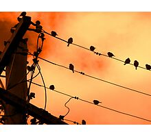 Wired For Sound Armidale New South Wales Photographic Print