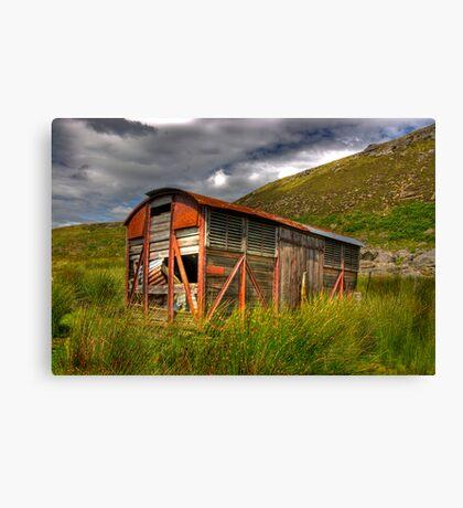Abandoned Wagon #1 Canvas Print