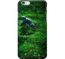 Little Adventures iPhone Case/Skin