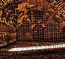 Torture Chamber Fortress Kalemegdan Belgrade by stockfineart