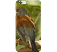 bird - pájaro iPhone Case/Skin