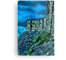 Ancient Ruins Fortress Kalemegdan Metal Print
