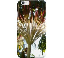 tropical beauty - belleza tropical iPhone Case/Skin