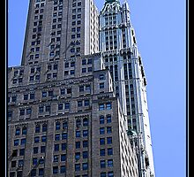 THE WOOLWORTH BUILDING by BOLLA67