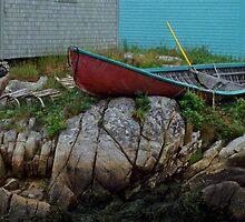 Nova Scotia Coastal scene by milton ginos