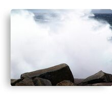 White-out! Canvas Print