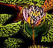Lily Glow I  /   by Shelley  Stockton Wynn
