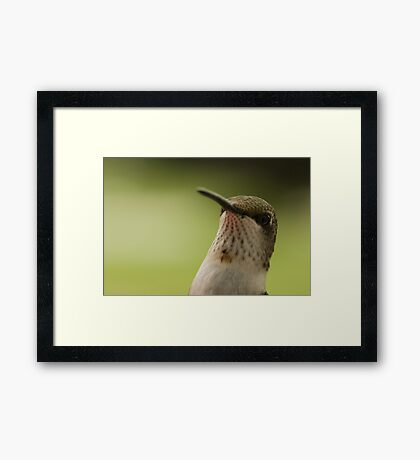 Hello! Framed Print