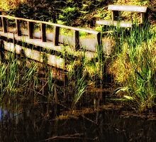 Bench By The Reeds by Karen  Betts
