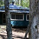Elkmont II by Gary L   Suddath