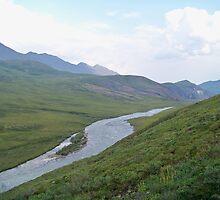 The Atigun River by Dandelion Dilluvio