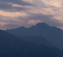 Arctic Dawn by Dandelion Dilluvio