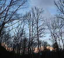 sun setting by saiberiac