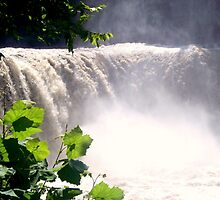 Cumberland Falls by Christie  Moses