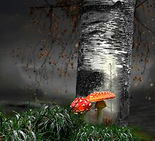 Forest Life by Igor Zenin