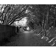 Shady Footpath Photographic Print