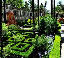 SEVILLA - THE ALCAZAR - Main Garden by Daniela Cifarelli
