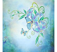 Blue Butterfly! SALE! Photographic Print
