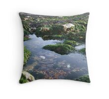 Rock Pool at Undercliff Walk Throw Pillow