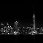 Auckland City by Peter Denniston