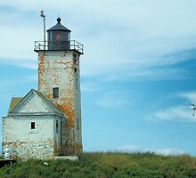 Two Bush Island Light, Spruce Head, Maine. by fauselr