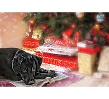 Waiting for Santa...... Photographic Print