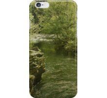 Peaceful River iPhone Case/Skin