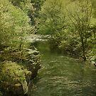 Peaceful River by Sandy Keeton