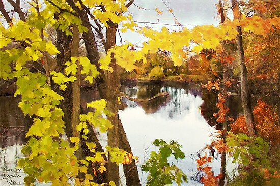 Grand River  /  Autumn in Michigan by Shelley  Stockton Wynn
