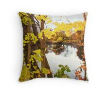Grand River  /  Autumn in Michigan Throw Pillow