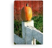 Pumpkin  / Canvas Print