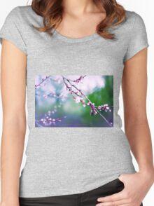 Sakura (3) Women's Fitted Scoop T-Shirt