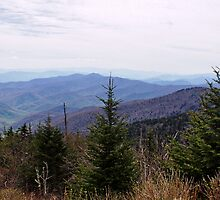 Clingman's Dome View by Sandy Keeton
