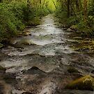 Downstream by Sandy Keeton