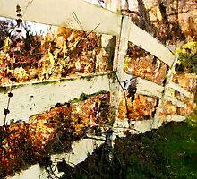 Grainery Fence / by Shelley  Stockton Wynn