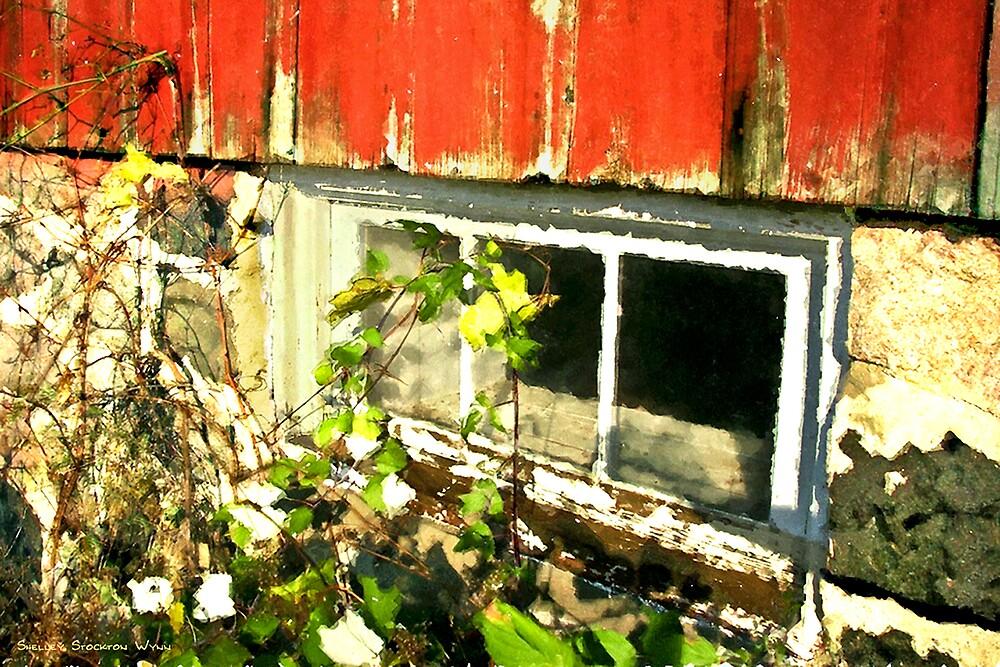 Grainery Window / by Shelley  Stockton Wynn