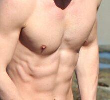 Colton Haynes Hot Shirtless Sticker
