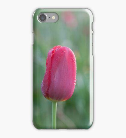 Single iPhone Case/Skin