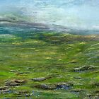 On the moor by Pam Amos