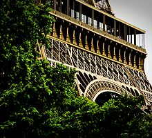 The Eiffel Tower by Pat Shawyer