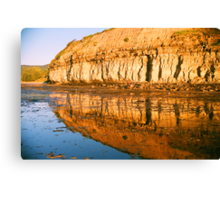from the rock shelf Canvas Print