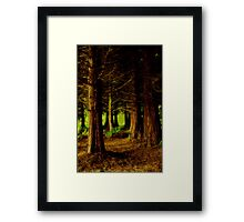 """""""At The Edge Of The Forest"""" Framed Print"""