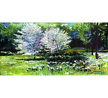 Germany Baden-Baden Spring 2 Photographic Print