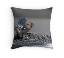 Can I have a Drink? Throw Pillow
