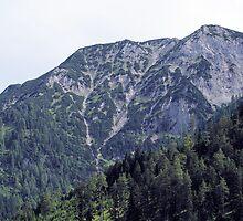 Mountains in Austria Tirol by theheijt