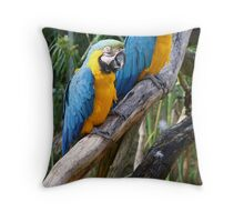 Pair of macaws Throw Pillow
