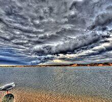 """ Approaching Storm  Marlo Australia "" by helmutk"