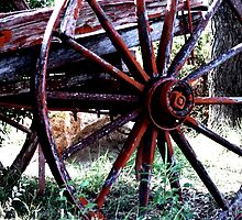 Old Wagon Wheel   by Carla Jensen