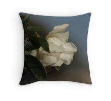 Raindrops on Iceberg Rose Throw Pillow